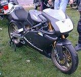duck500front.JPG