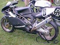 duck500side.JPG